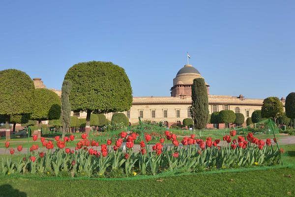mughal gardens7
