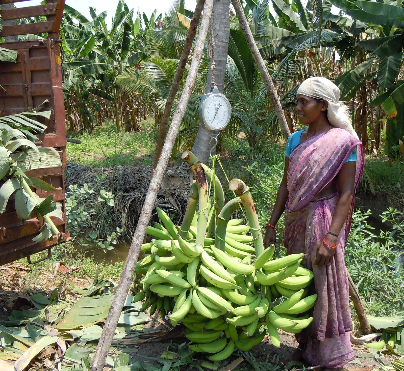 Kudumbashree The Kerala Governments Poverty Alleviation Programme Launched In 1998 Has Brought About A Green Revolution In The State Today