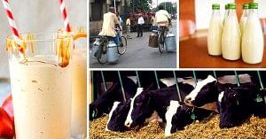 Milk in India