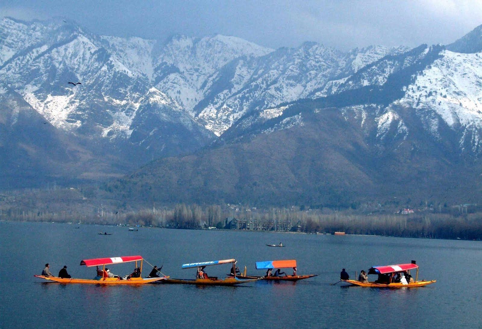 Shikaras on Dal Lake
