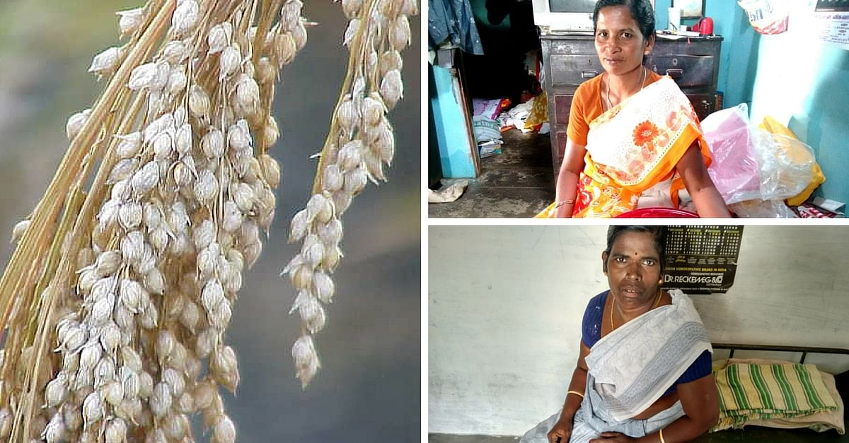 TBI BLOGS: Rural Women Entrepreneurs in Tamil Nadu Sell Millets As Junk Food Alternative