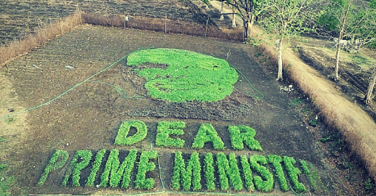 Why Are Farmers in Madhya Pradesh 'Growing' the Prime Minister's Face in a Field?