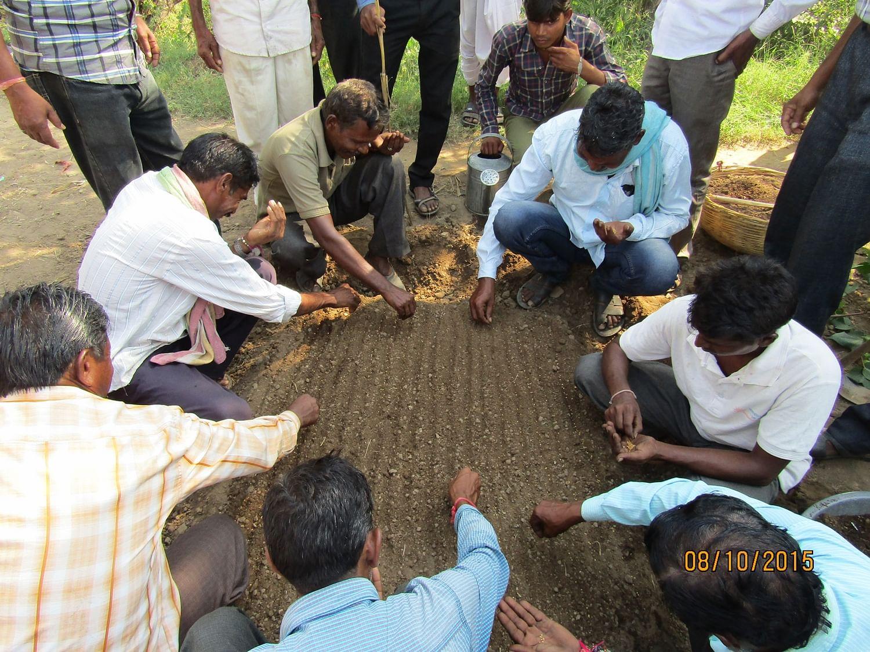 Farmers planting seeds