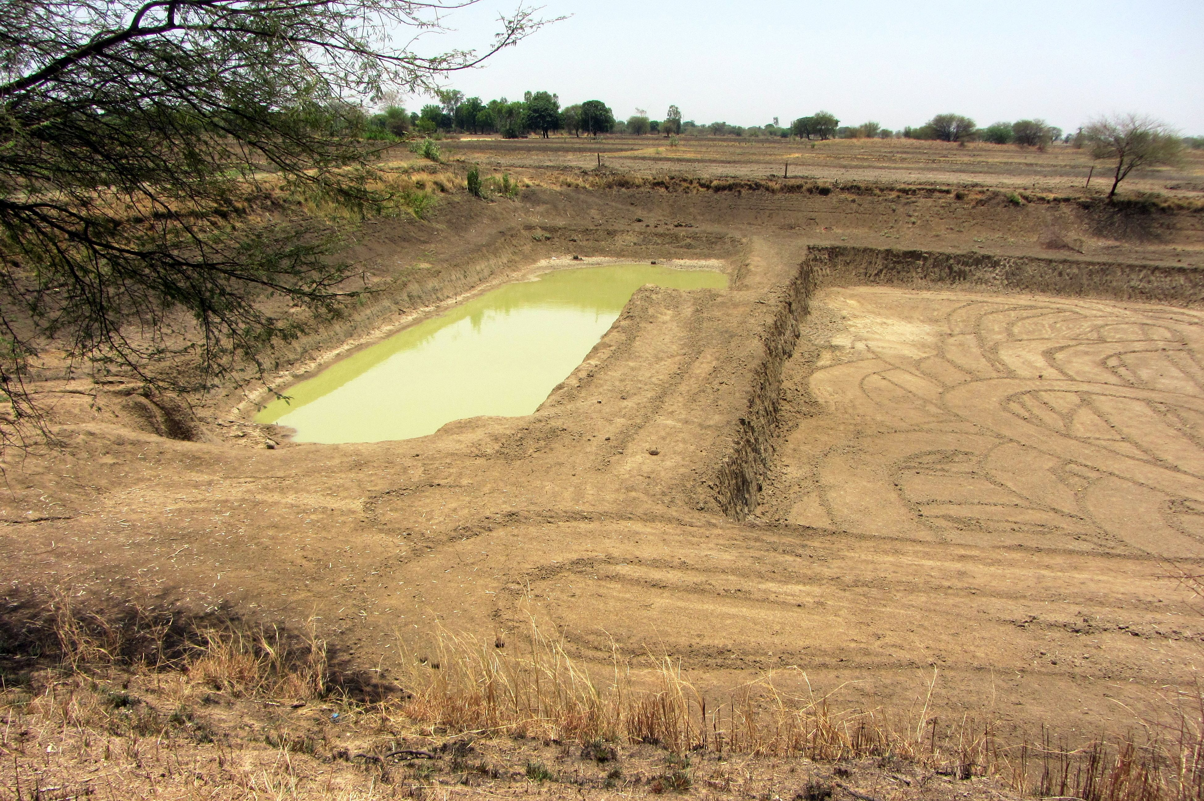 One of the large farm ponds in Tonk Khurd village still holding some water now neatly segregated from the portion being deepened.