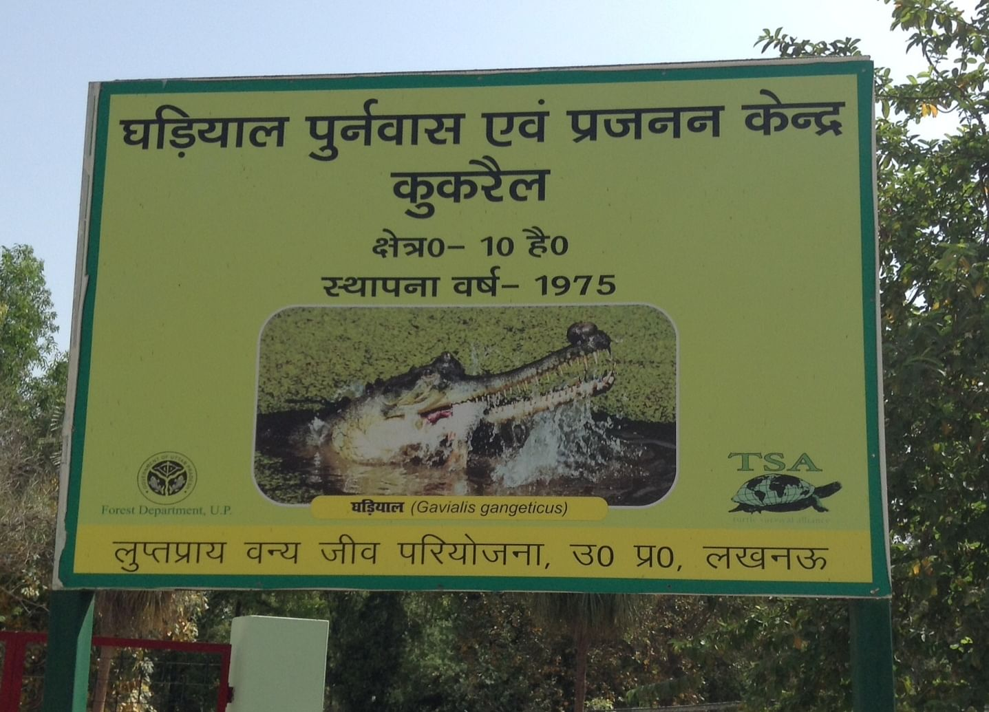 The Kukrail Gharial Rehabilitation Centre