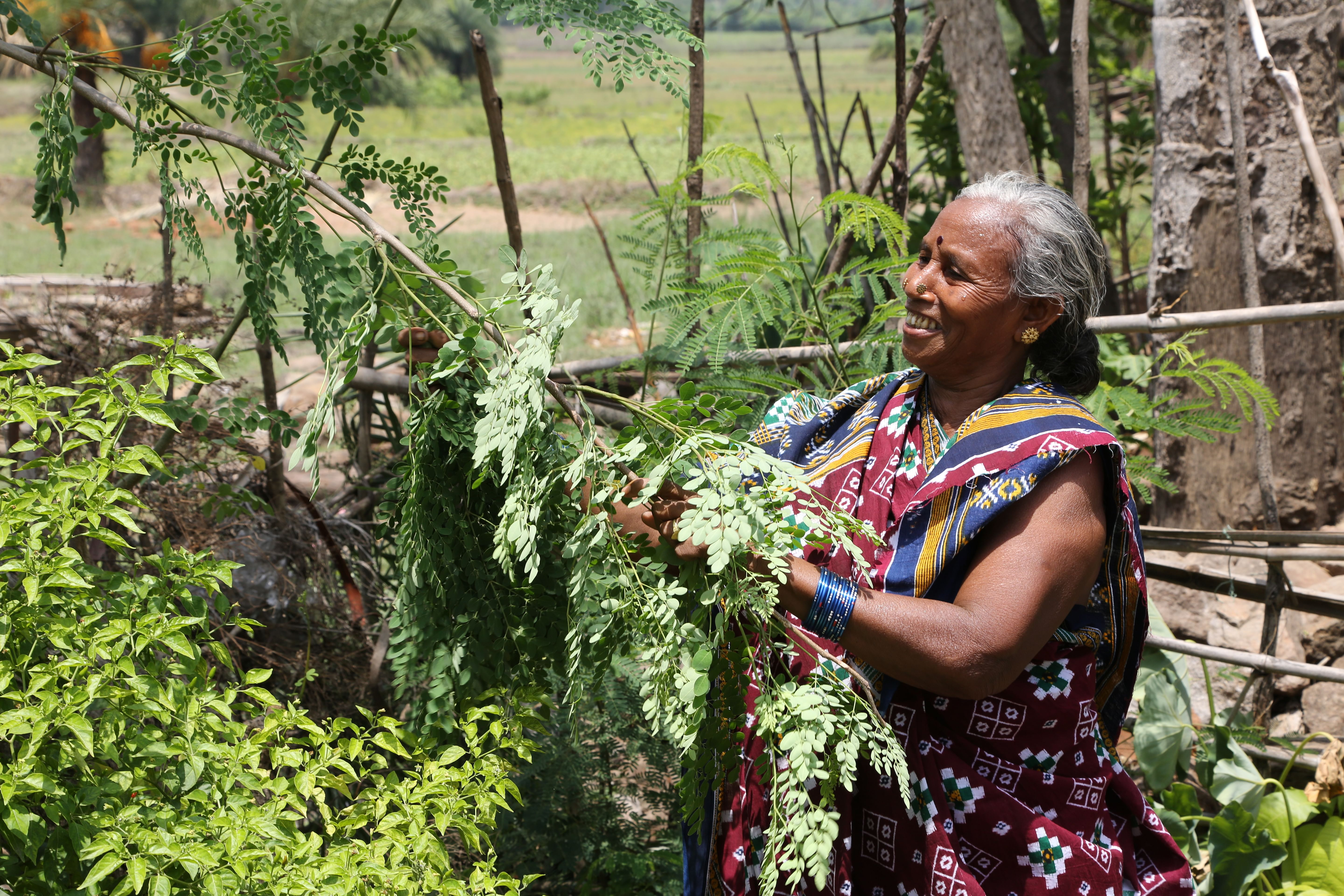 The rural women's movement for political and economic identity as farmers and their right to land has played a significant role in dismantling structures of power and gender-based exclusion from ownership of land and its management.