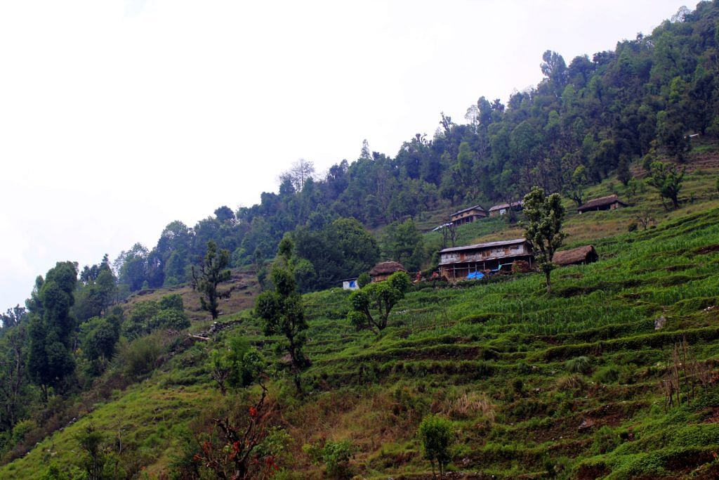 On the way to Siwai