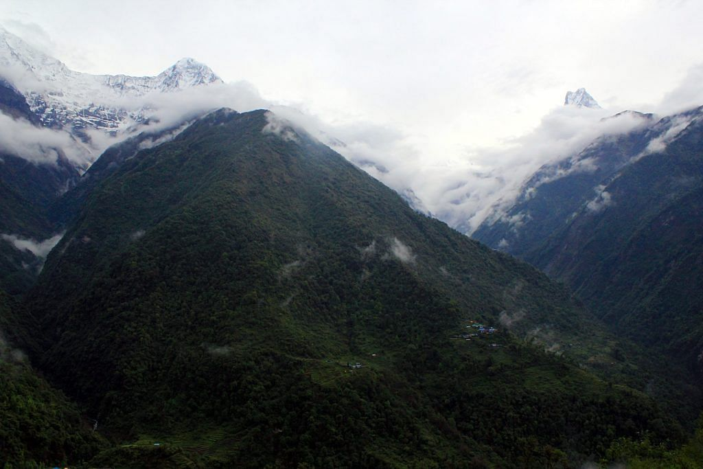Morning view from Chhomrong of Annapurna and Machcha Puchhre