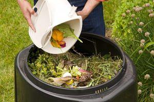 compost_methods_food_scraps
