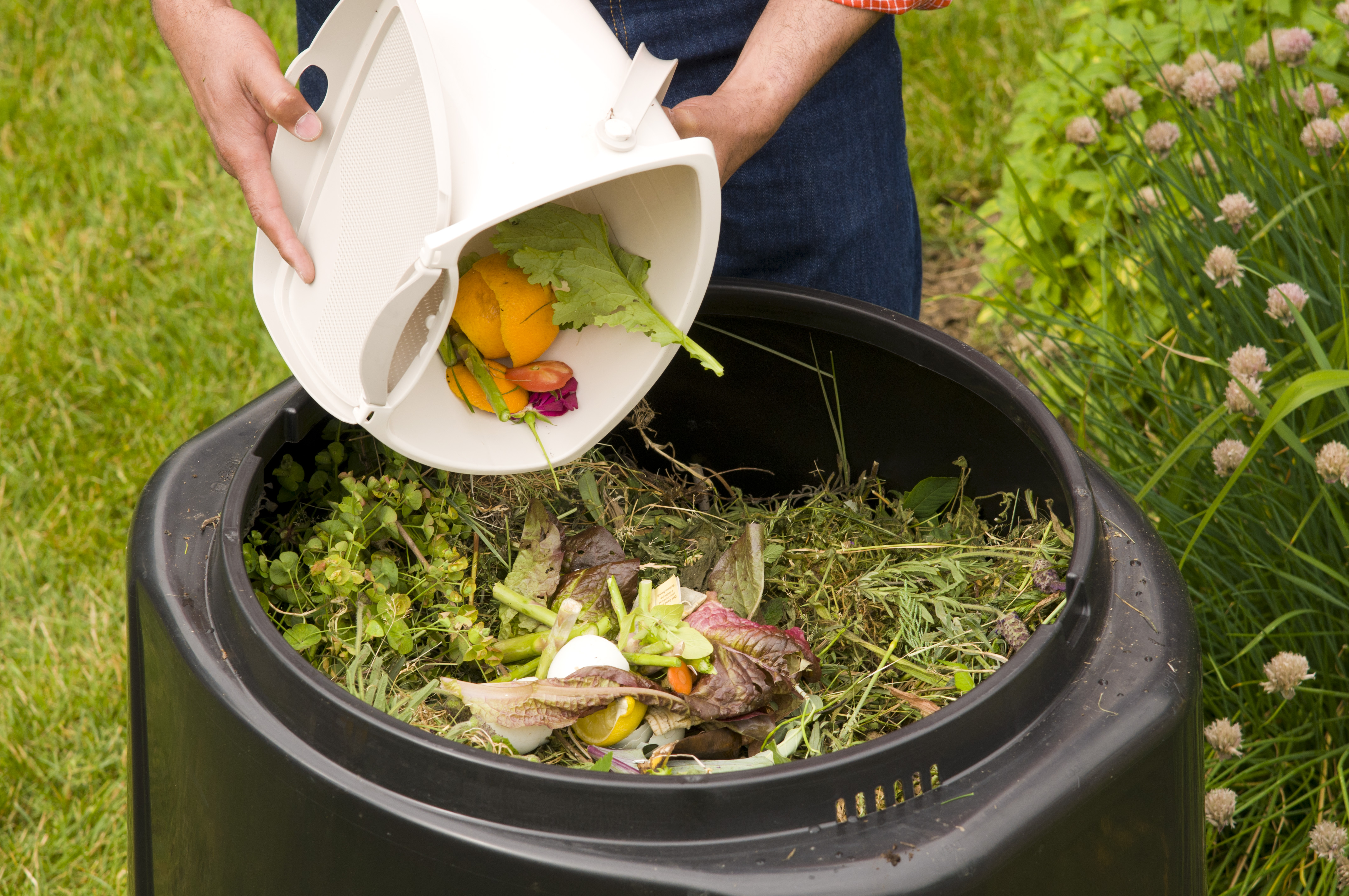 Waste Not, Want Not: 14 Ways You Can Reduce Food Waste at Home