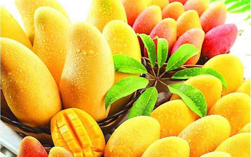 fresh-mango-1231904