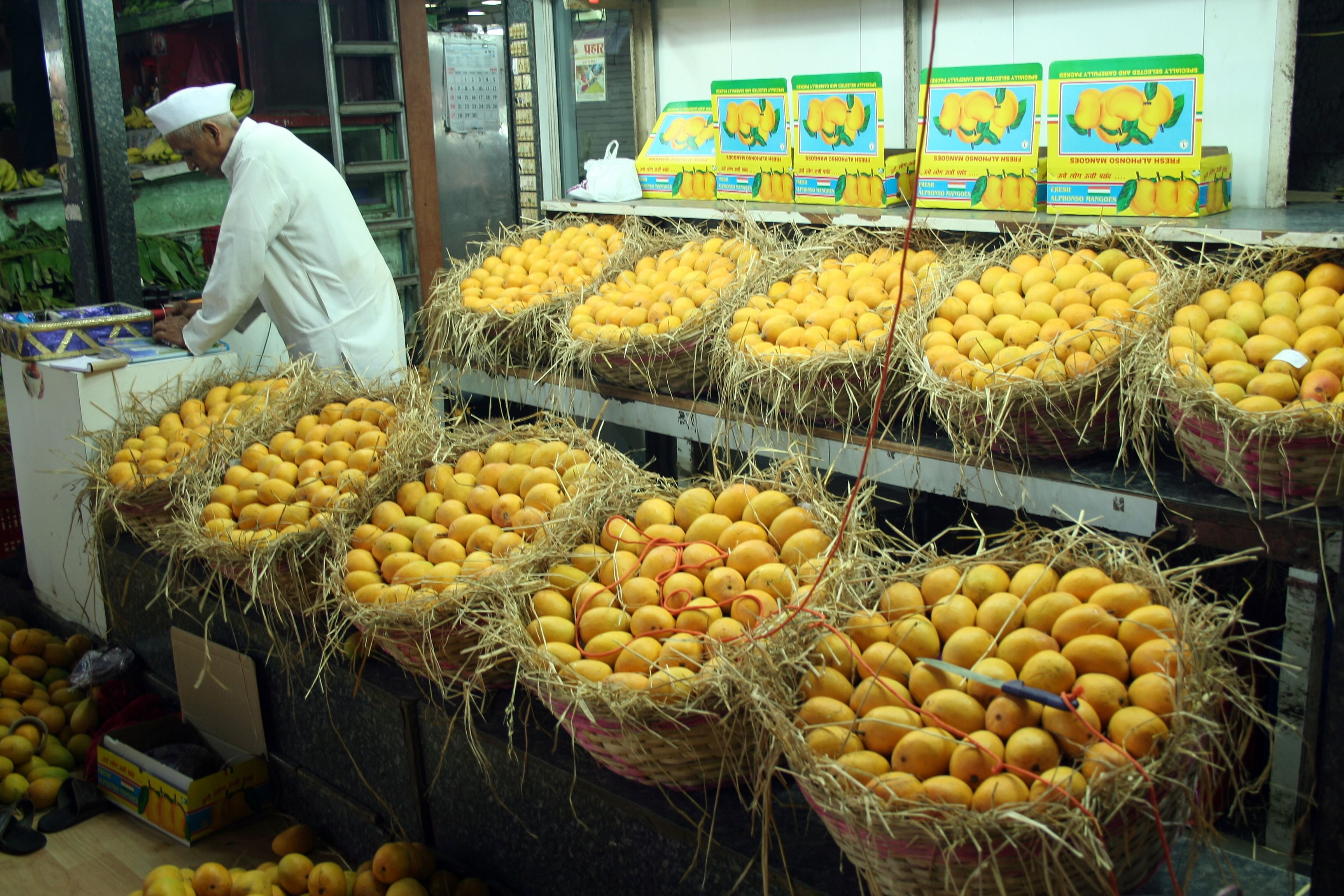 Food for Thought: Unpeeling the Mango's Interesting History in India
