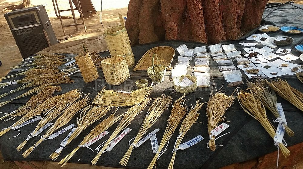 Indigenous crops, seeds and craft on display.