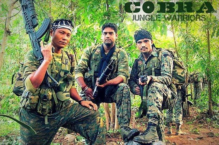 Image result for cobra force