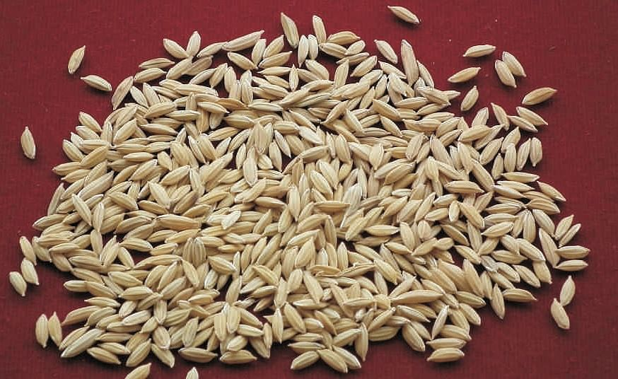 Rice kernels used for making jewellery