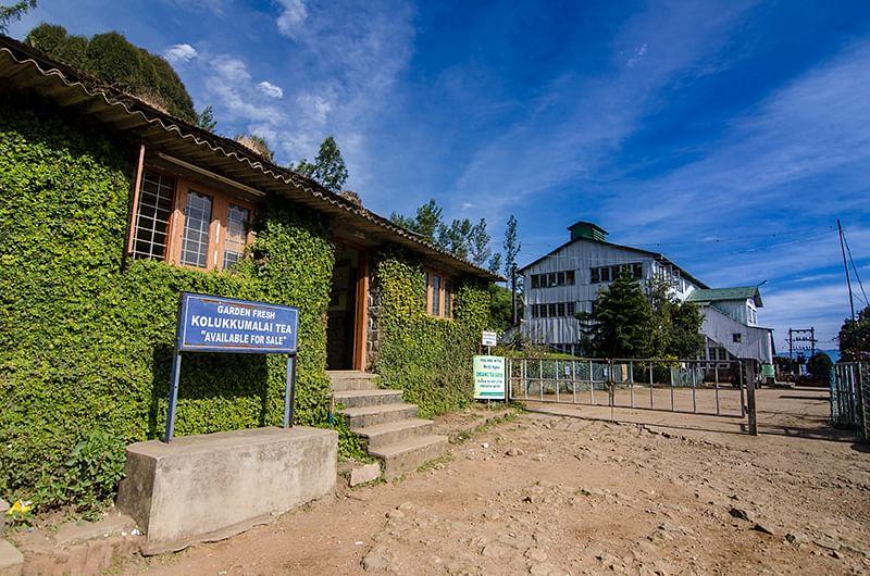 Image result for kolukkumalai tea estate