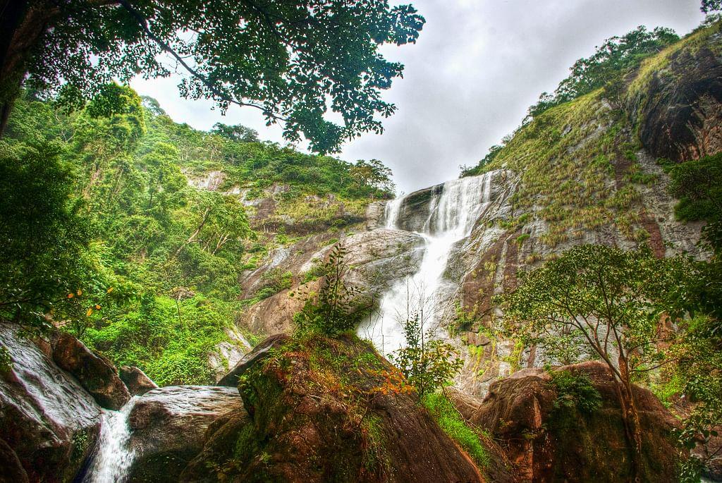 Palaruvi_Waterfall_Thenmala_14489