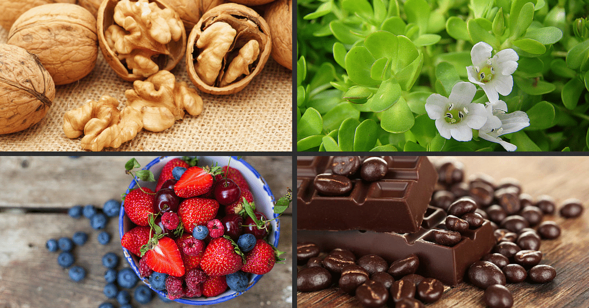 Eat for a Sharper Mind: The 15 Healthiest Brain Foods You Should Be Eating