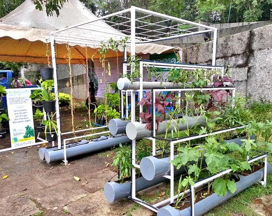 Lovely Agritech