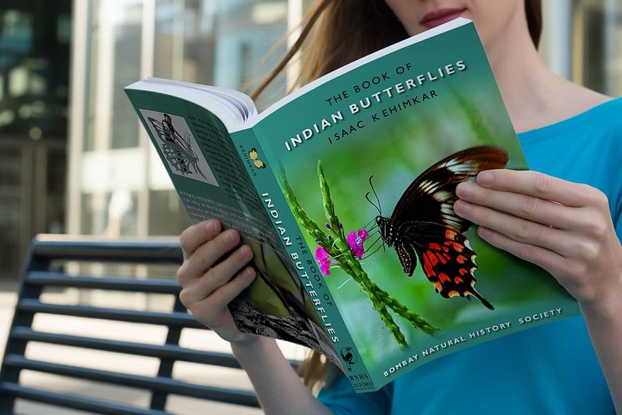 book-of-indian-butterflies-guide-indian-wildlife-book-design-lycodonfx-sameer-isaac-kehimkar-environment-conservation-media-puplication-oxford-900x601