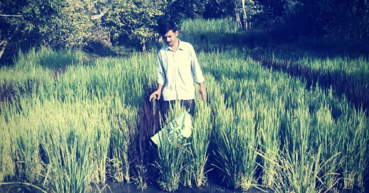 This Man Gave up City Life to Pursue Organic Farming & Preserve Indigenous Seeds in Mandya