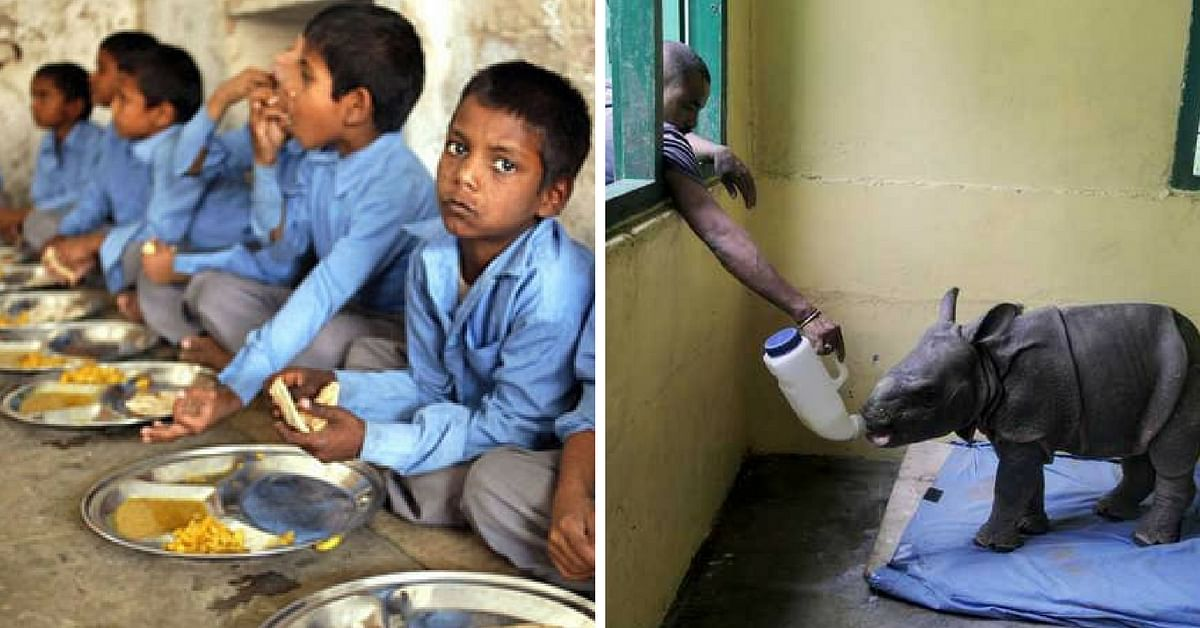 Primary Schoolkids in Assam Give Up Midday Meal to Buy Milk for Rescued Baby Rhinos