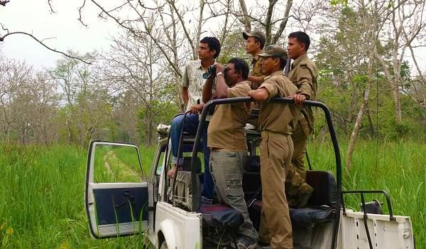 monitoring_elephant_population_inside_the_manas_whsnamita_brahma