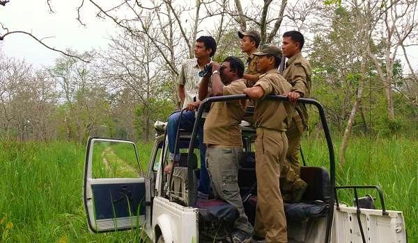 monitoring_elephant_population_inside_the_manas_whsnamita_brahma