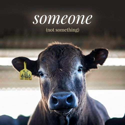 someone-not-something2