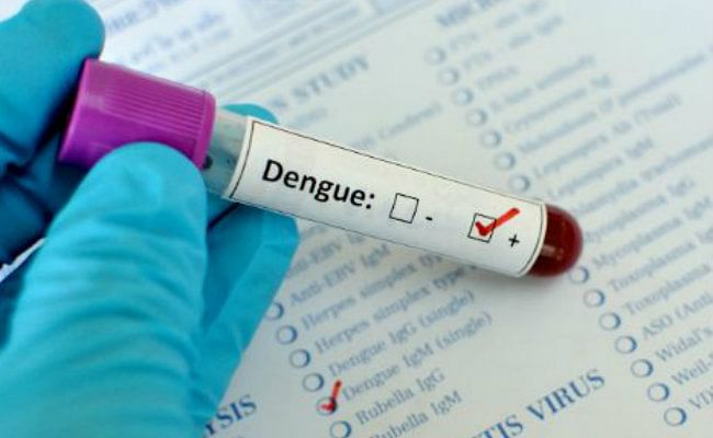 Dengue and Chikungunya: Everything You Need To Know To Fight