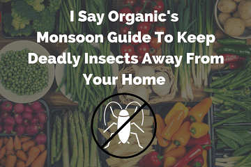 i-say-organics-monsoon-guide-to-keep-deadly-insects-away-from-your-home