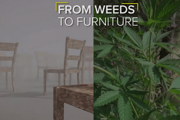furniture from weeds