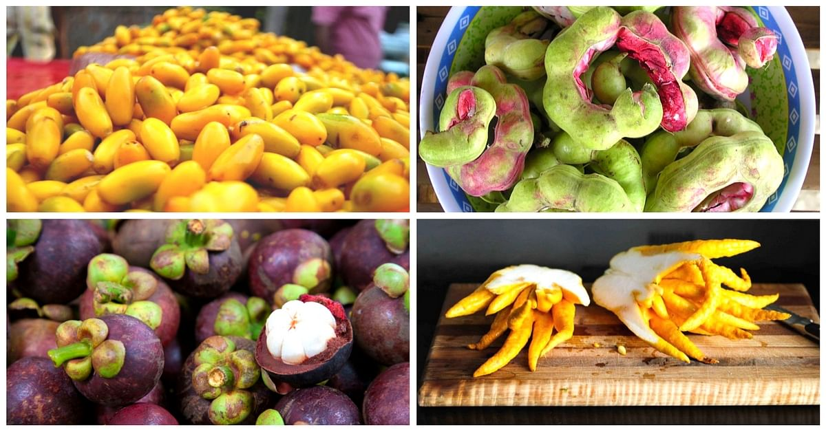 15 Unique and Rare Indian Fruits You Need to Try Right Now