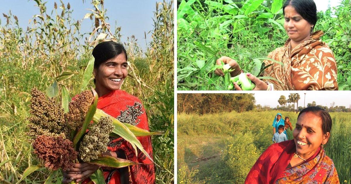 Celebrating India's Rural Women: 3 Inspiring Stories of Women Farmers Bringing About Change