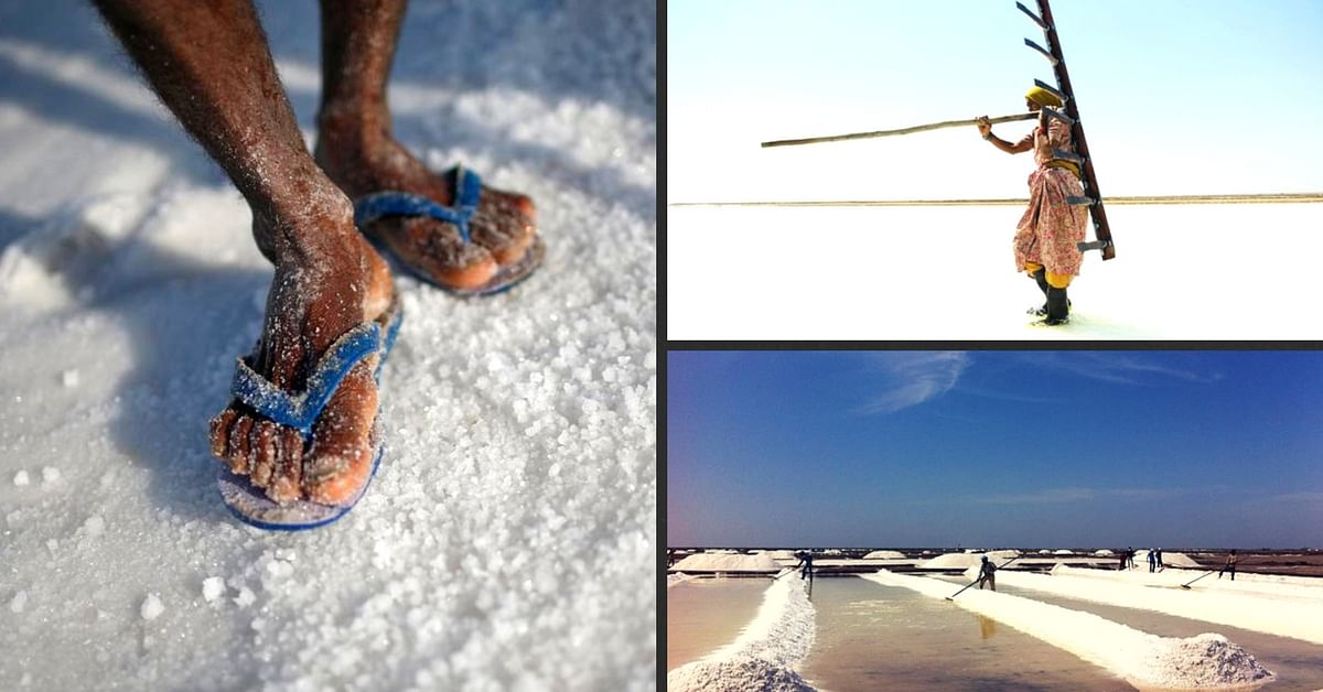 Worth their Salt: A Fascinating Glimpse into the World of the Hardworking Salt Farmers of Kutch