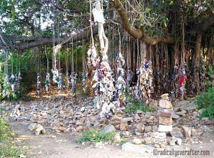Hampi, Karnataka, prayer tree