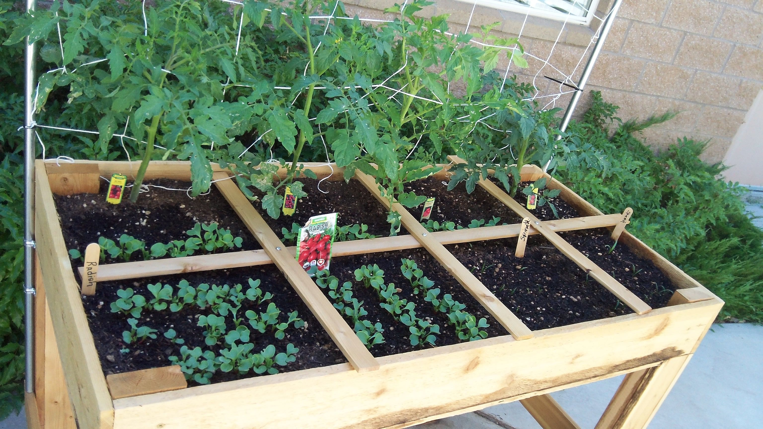 5 Space Savvy Easy And Efficient Urban Gardening Ideas