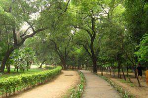 dily-lodhi-garden