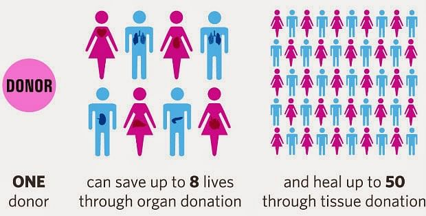 donation-infographic
