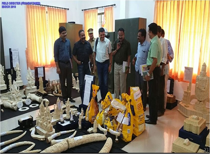 Dr. Amit Mallick and his team with the seized ivory,