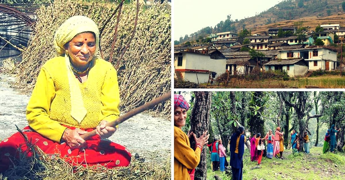 How One Determined Woman Single-handedly Electrified Her Village and Took on the Timber Mafia
