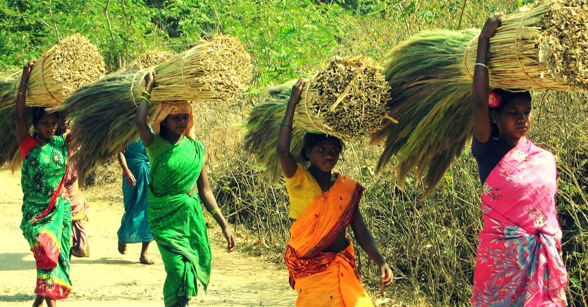 TBI Blogs: Tribal Women from Odisha's Kashipur Block Are Standing up against Exploitation – One Broom at a Time
