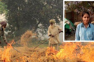 haryana-girl-stubble-burning