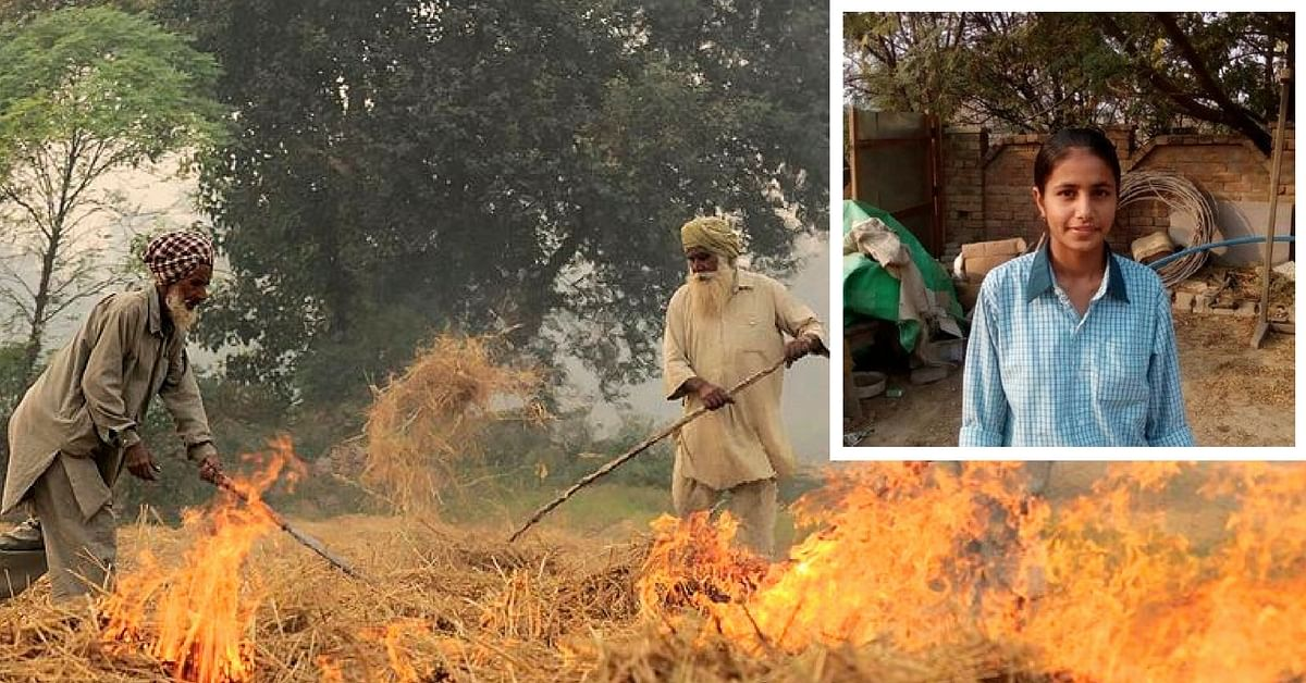 Haryana Girl Takes a Brave Stand against Air Pollution, Reports Her Father for Stubble Burning