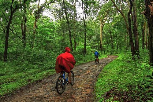 coorg_cycling_monsoon
