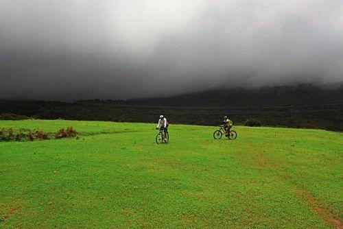 coorg_grasslands_cycling_zpse315df58