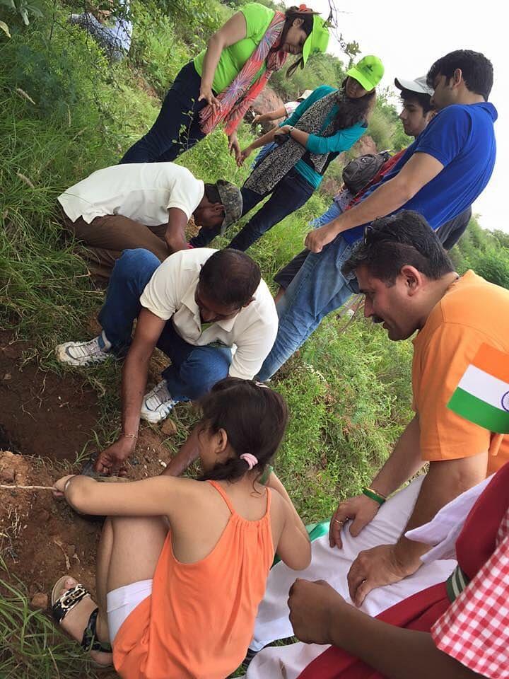 plantation-activity