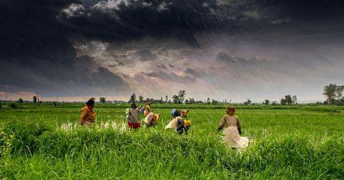 volunteer travel india
