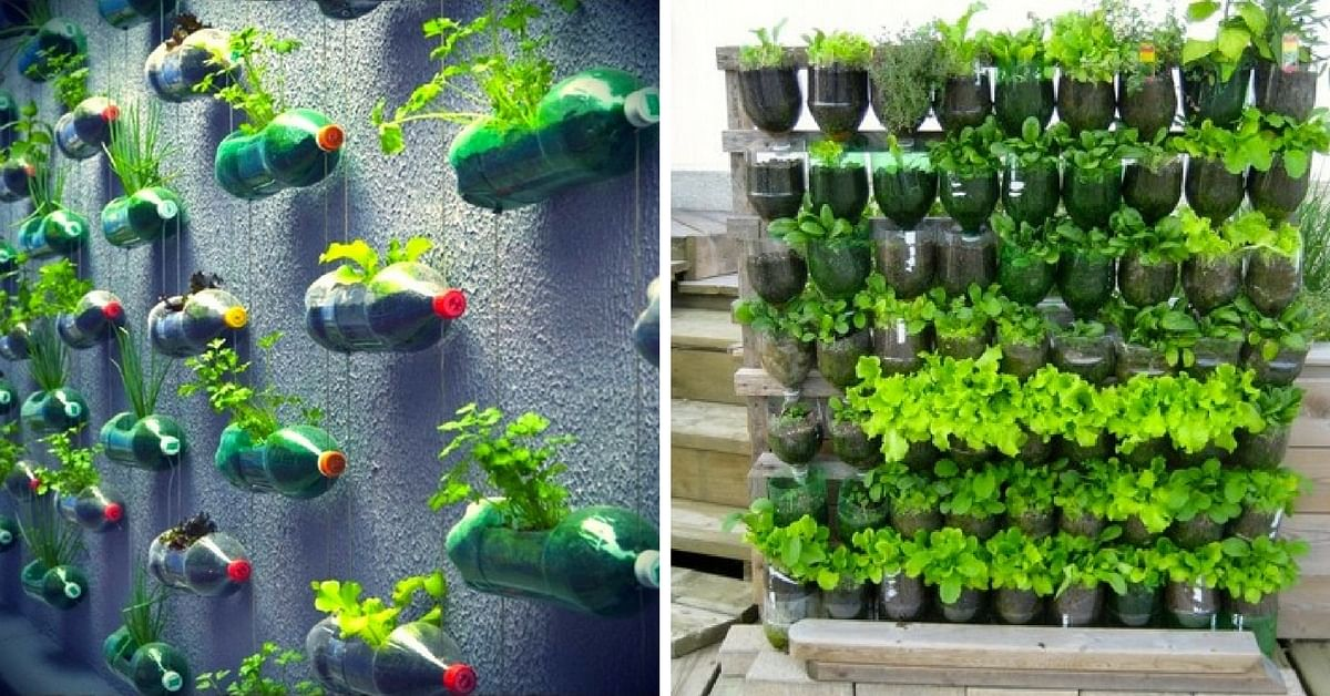 Here S How To Save Time And Space By Vertical Gardening At