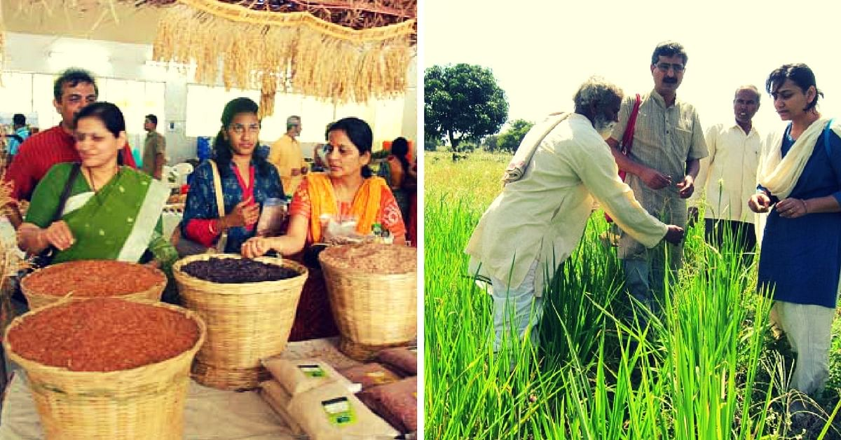 Over 5000 Organic Farmers Are Reviving Traditional Crop Varieties. Thanks to One Organization.
